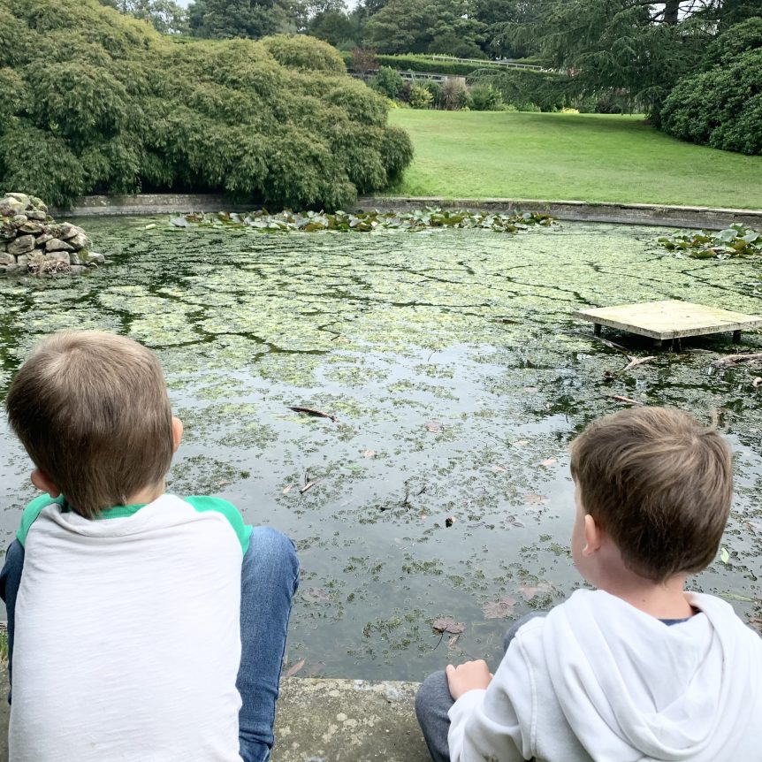 Autism Friendly Days Out